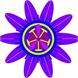 Bethel Health and Healing Network
