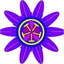 Bethel Health and Healing logo
