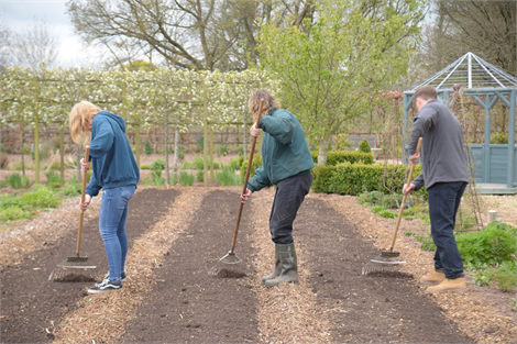 Horticulture NVQ