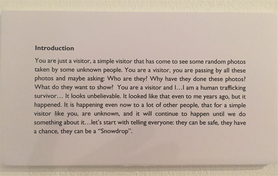 Intro to a photography exhibition written by a client