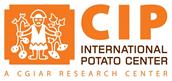 International Potato Center
