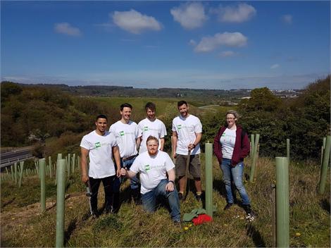 Corporate Tree Planting Volunteers