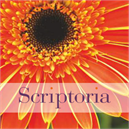 Scriptoria Sustainable Development Solutions
