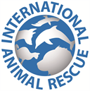 International Animal Rescue