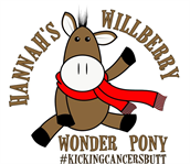Hannah's Willberry Wonder Pony Charity