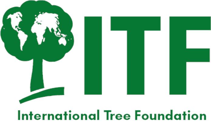 2020 ITF Logo