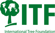 International Tree Foundation