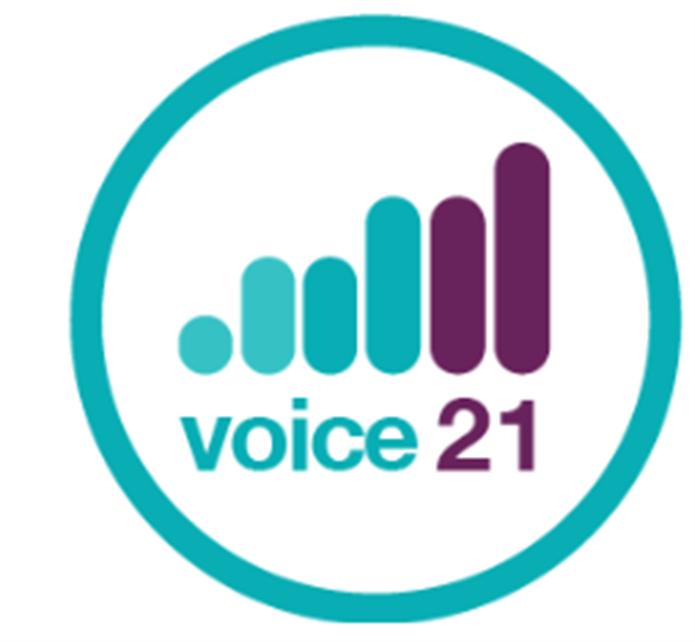 V21 Logo