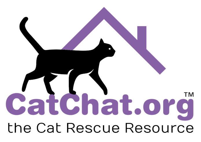 Cat Chat Charity Logo