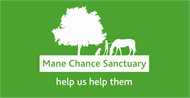 Mane Chance Sanctuary