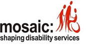 Mosaic shaping disability services