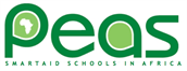 Business Development Lead - PEAS Promoting Equality in African Schools (Competitive, Southwark)