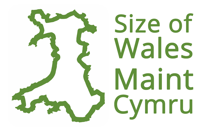 Size of Wales logo